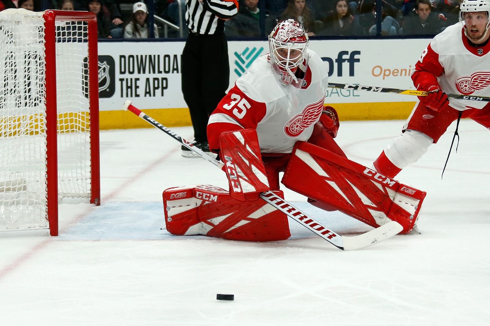 Detroit Red Wings: 3 players that will not return next season